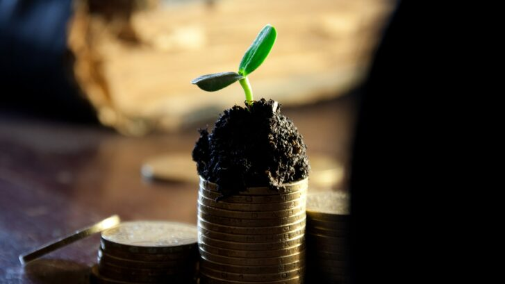 Why Do Growing Businesses Borrow Money